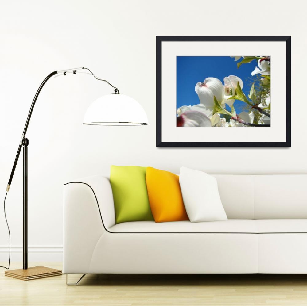 """Blue Sky Fine Art Photogrpahy White Dogwood Flower&quot  (2012) by BasleeTroutman"