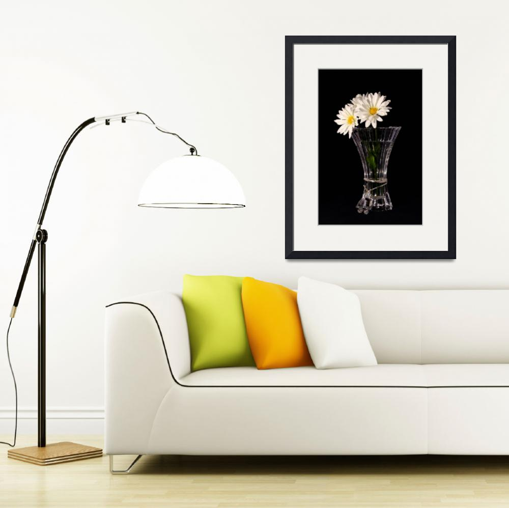 """Daisies In Vase&quot  (2013) by PhotographyTKDesigns"