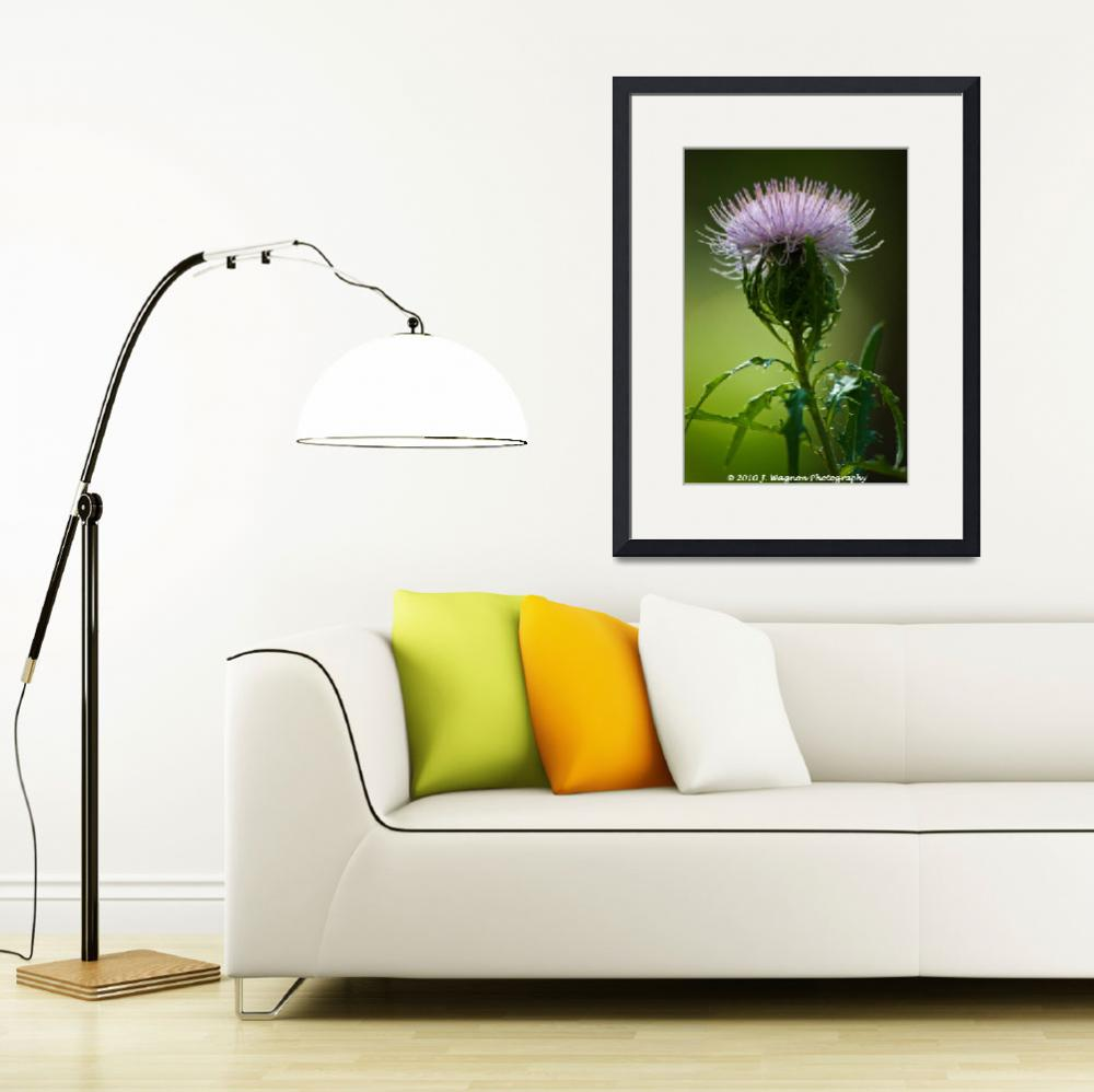 """I ♥ Thistles&quot  by Janice_Wagnon_Photography"