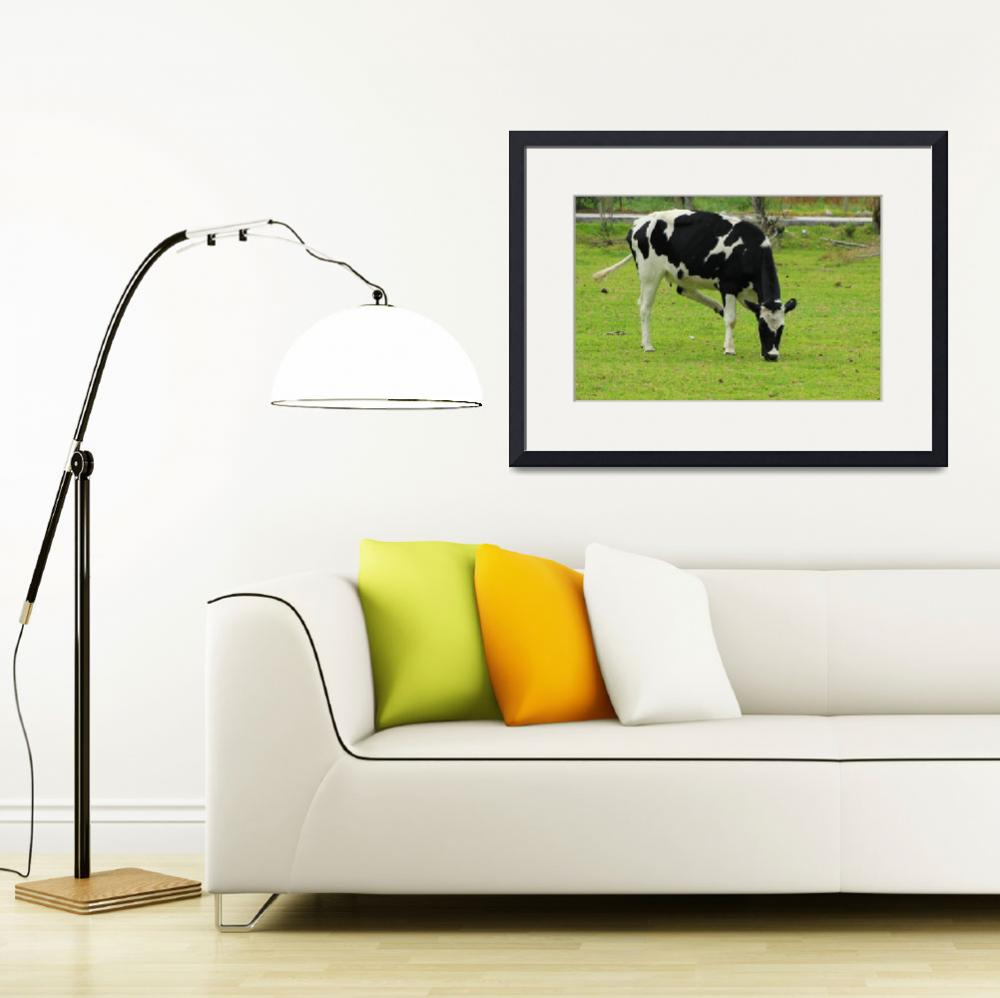 """Holstein Cow on a Farm&quot  (2015) by rhamm"