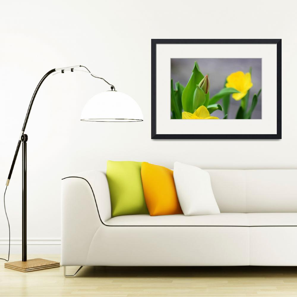 """Tulip Bud with Daffodils&quot  (2014) by KsWorldArt"