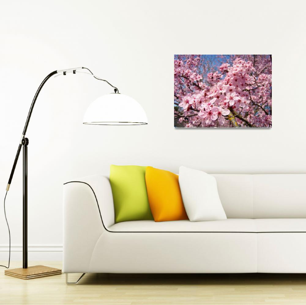"""Spring Tree Blossoms&quot  (2011) by BasleeTroutman"