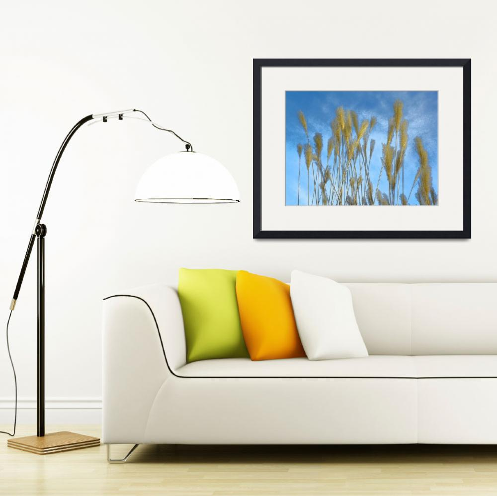 """In The Presence Of Nature - Pampas Grass&quot  by artsandi"
