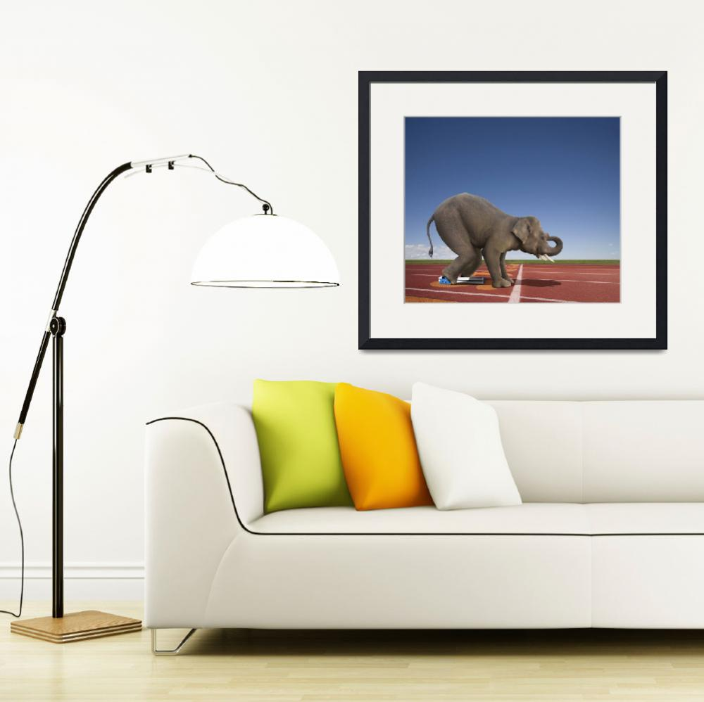 """Elephant Sprint&quot  (2010) by johnlund"