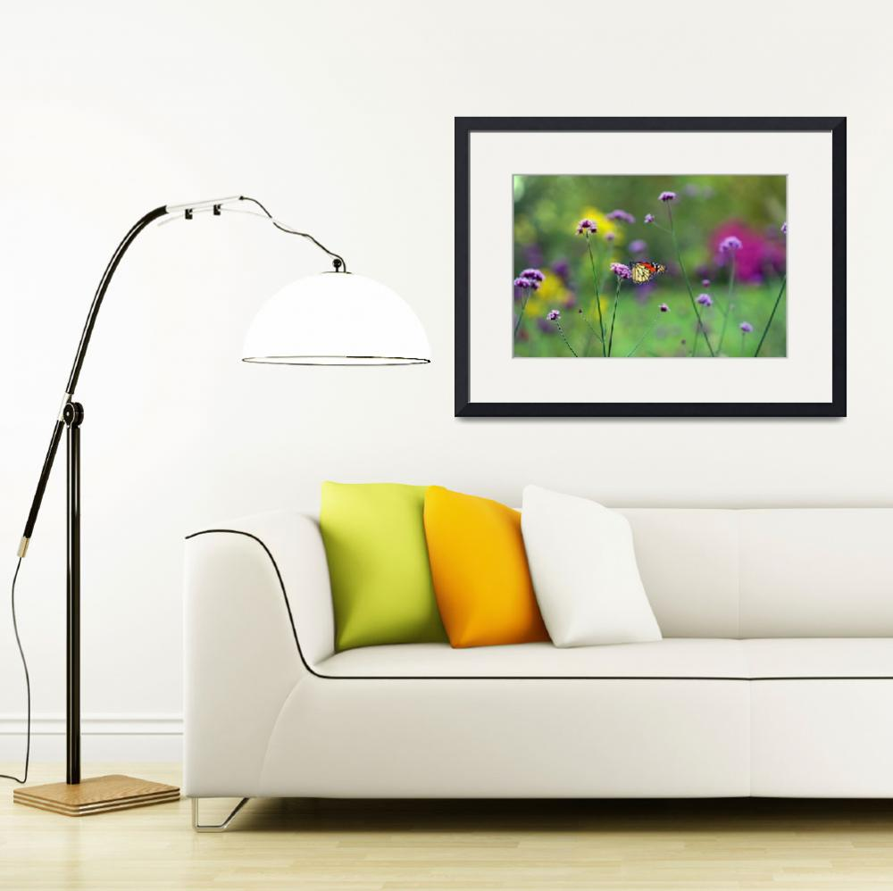 """Butterfly Monarch in Garden Meadow&quot  (2011) by KsWorldArt"