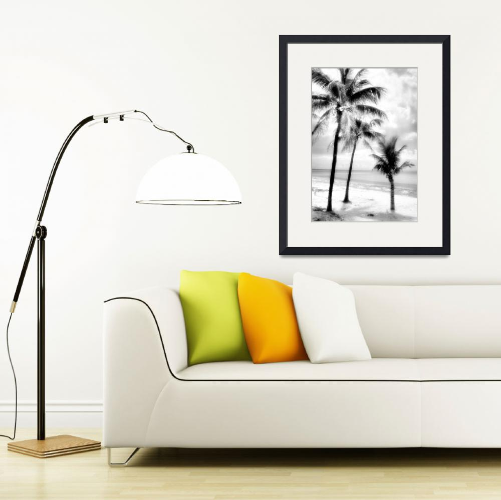 """Palms in Silver I&quot  by Cynthia_Burkhardt"