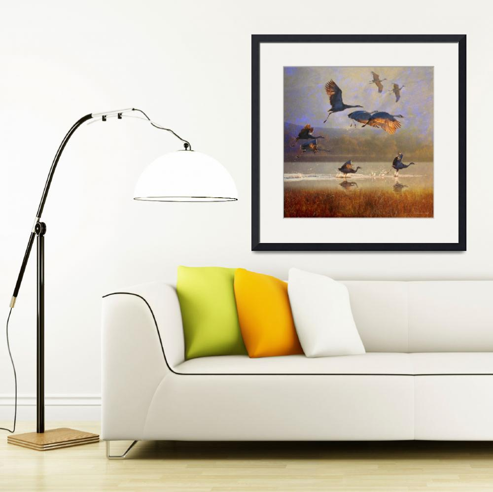 """sunrise on the marsh2 - sandhill cranes&quot  (2012) by rchristophervest"