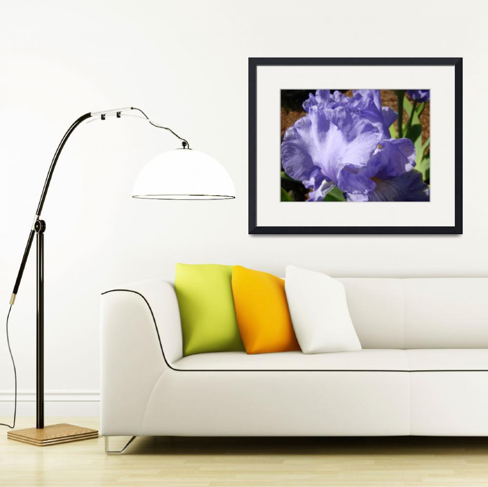 """BLUE PURPLE IRIS FLOWER Art Print Floral Garden&quot  (2009) by BasleeTroutman"