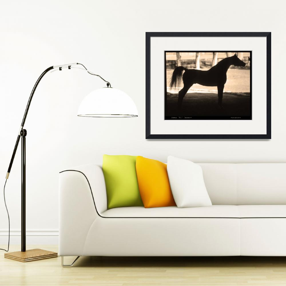 """Arabian Horse Silhouette Sepia Print&quot  (2010) by lightningman"