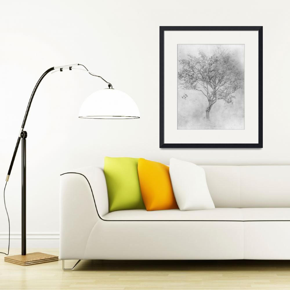"""Study of a Lemon Tree&quot  by ArtLoversOnline"
