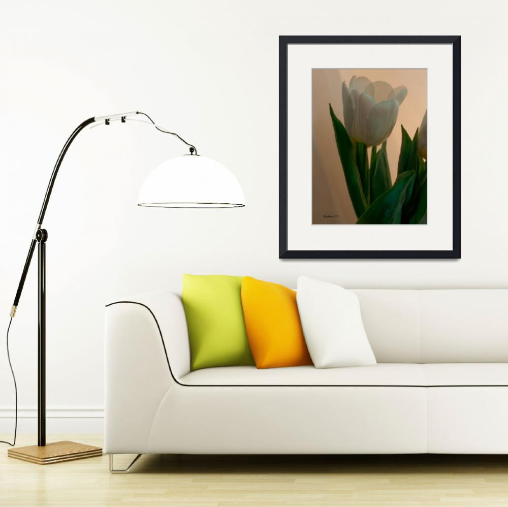 """White Tulip One&quot  (2011) by bleij50"