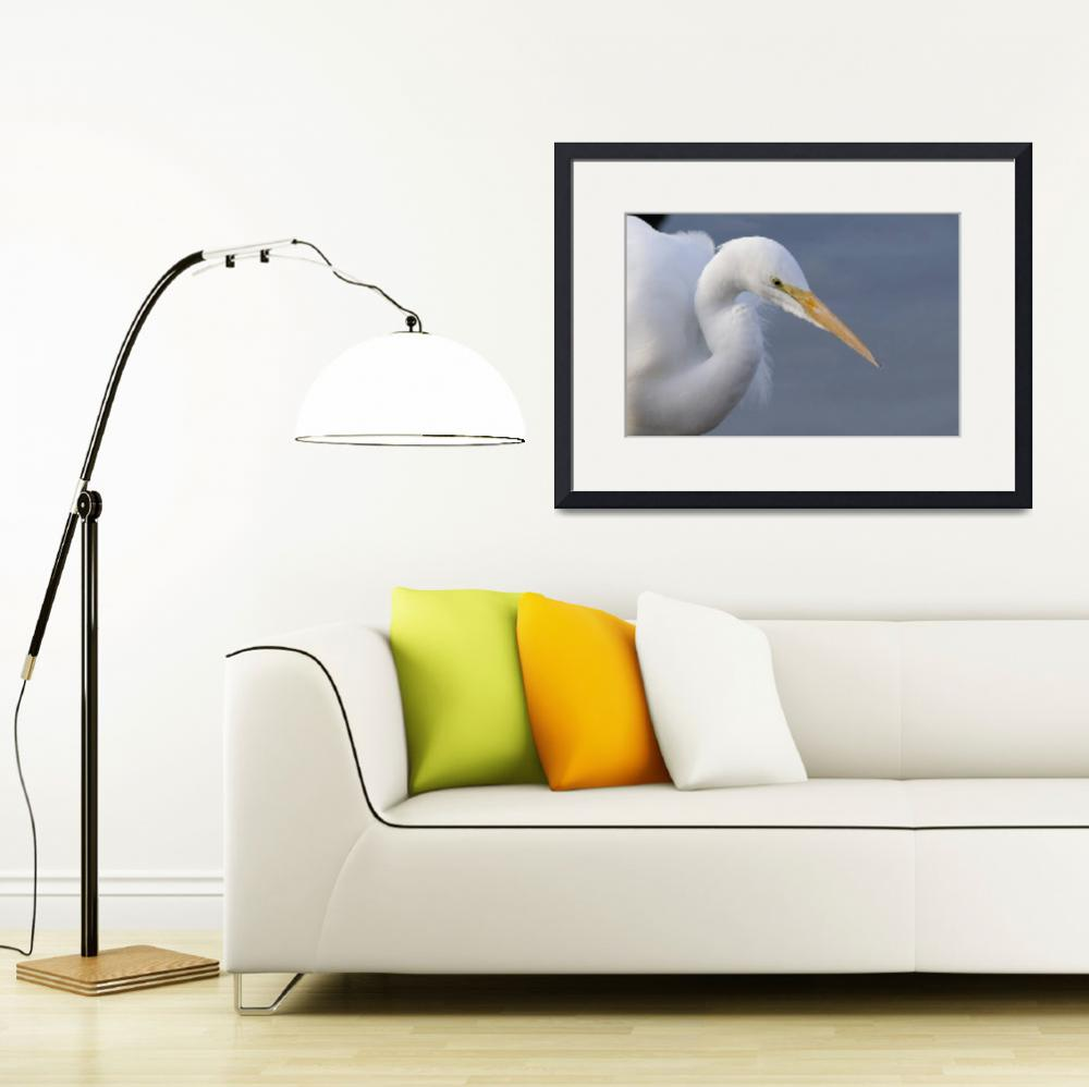 """Great Egret&quot  (2011) by Polytelis"