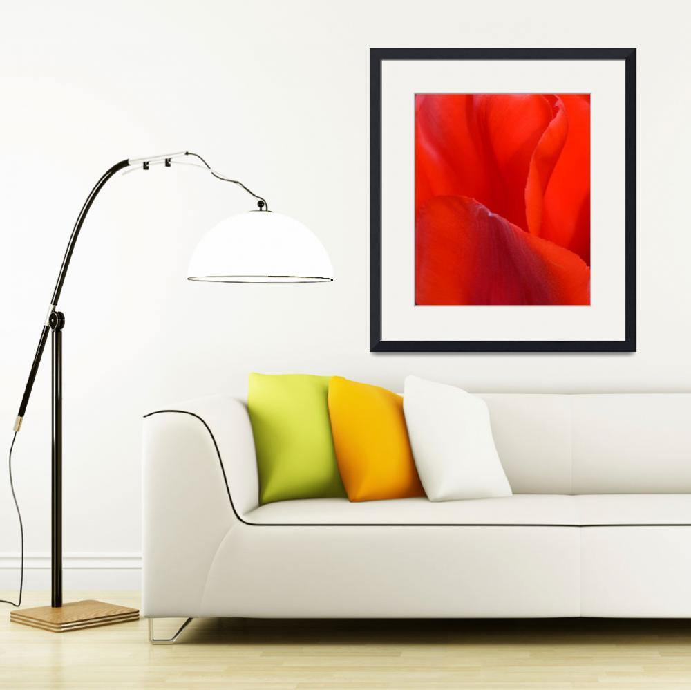 """""Red Tulip 1"" #1042315.0676&quot  (2015) by achimkrasenbrinkart"