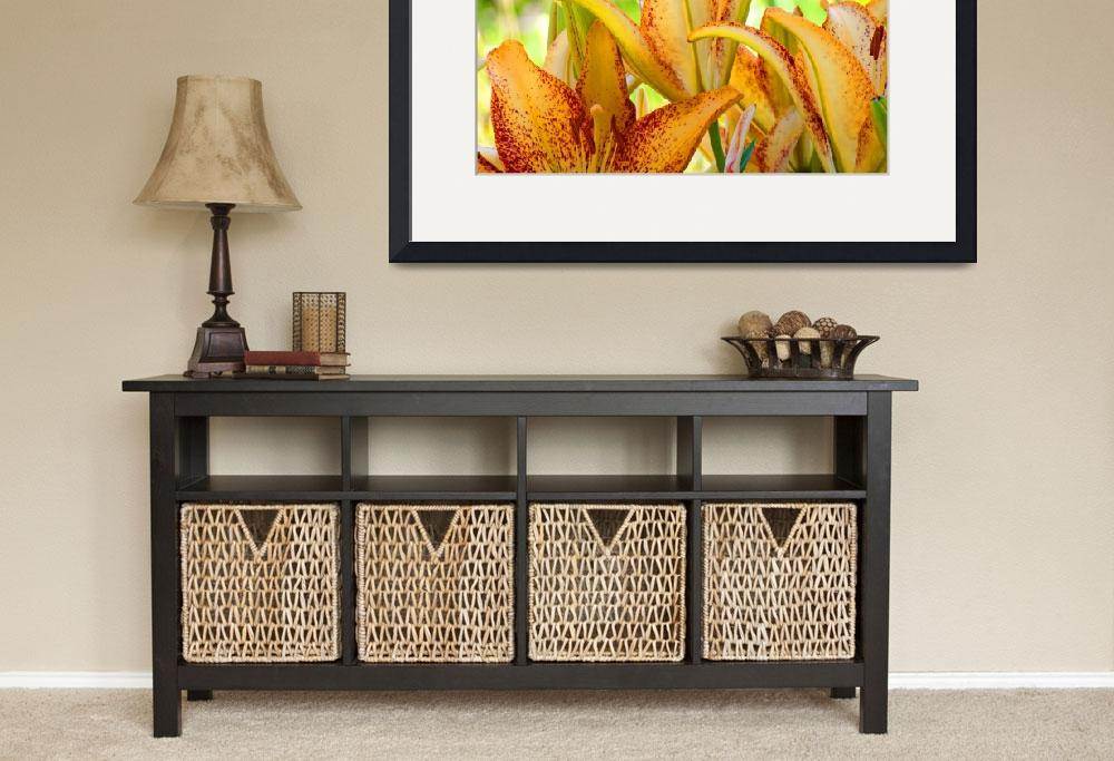 """Lilies art print Orange Lily Flowers Botanical&quot  (2010) by BasleeTroutman"