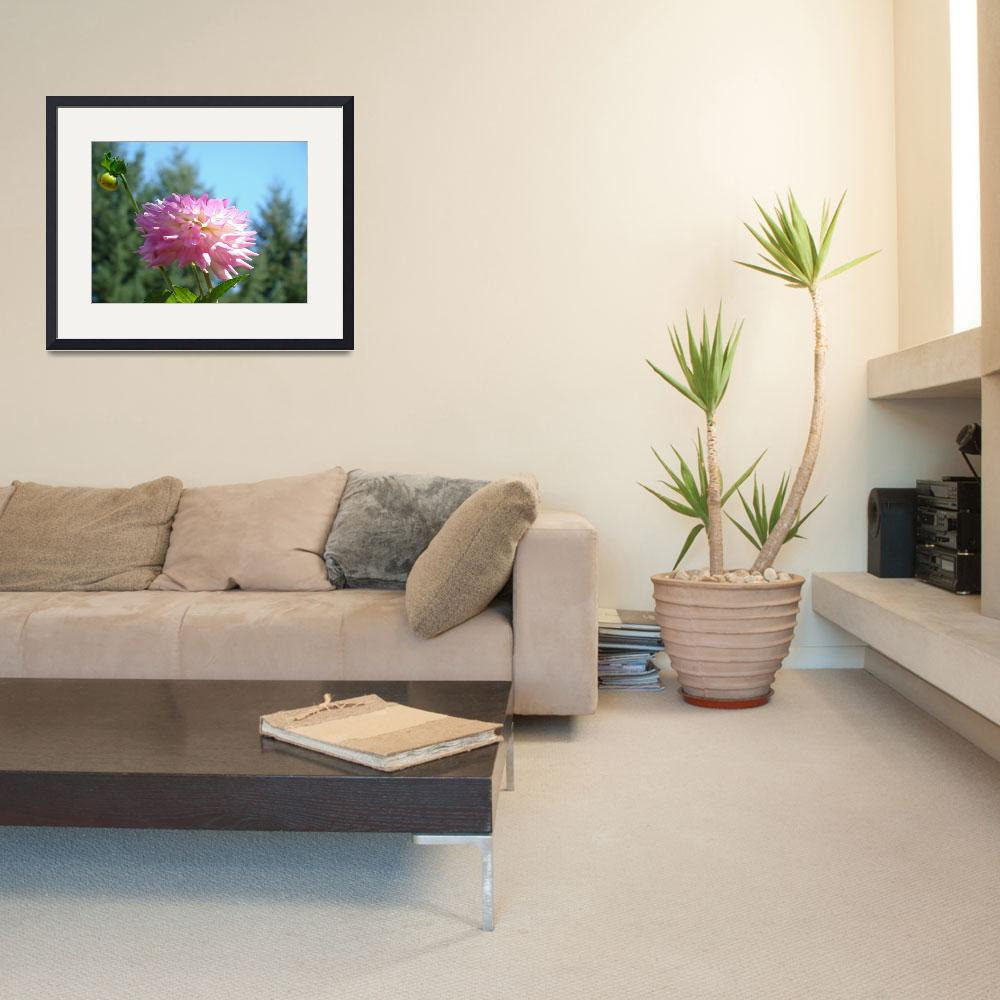 """Summer Botanical Garden art prints Dahlia Flower&quot  (2011) by BasleeTroutman"