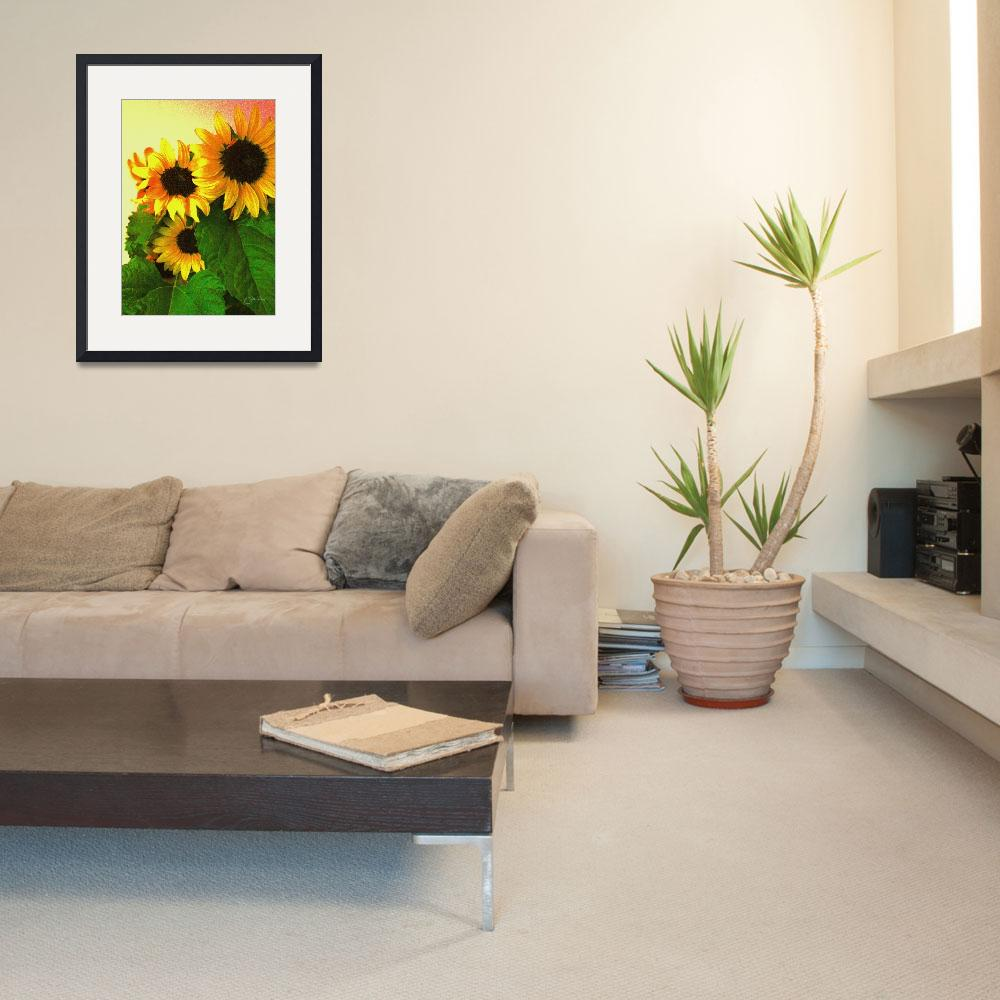 """Three Sunflowers&quot  (2008) by judithschmidt"