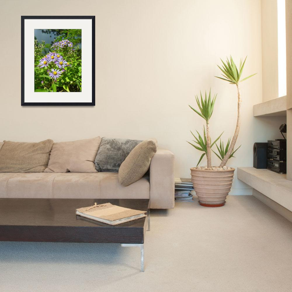 """Botanical - Woodland Aster - Outdoors Floral&quot  by artsandi"