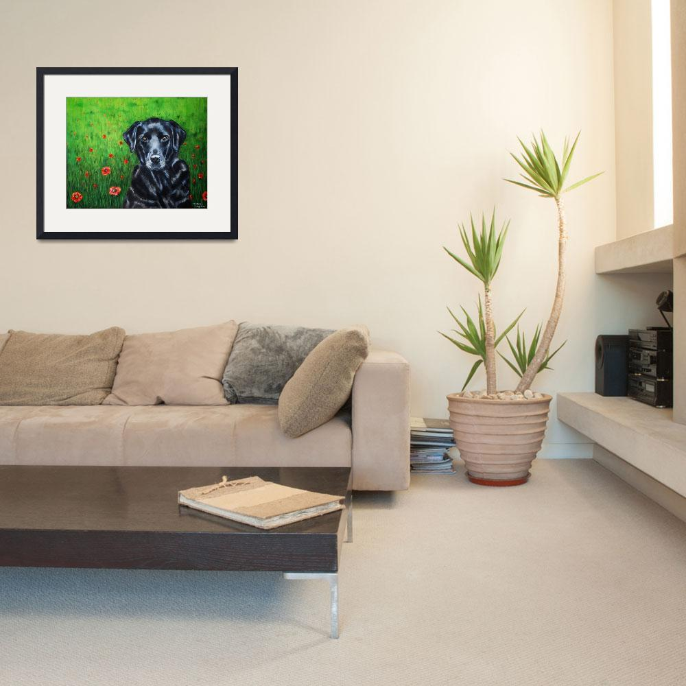"""poppy_labrador_portrait_0009RC&quot  by MichelleWrighton"