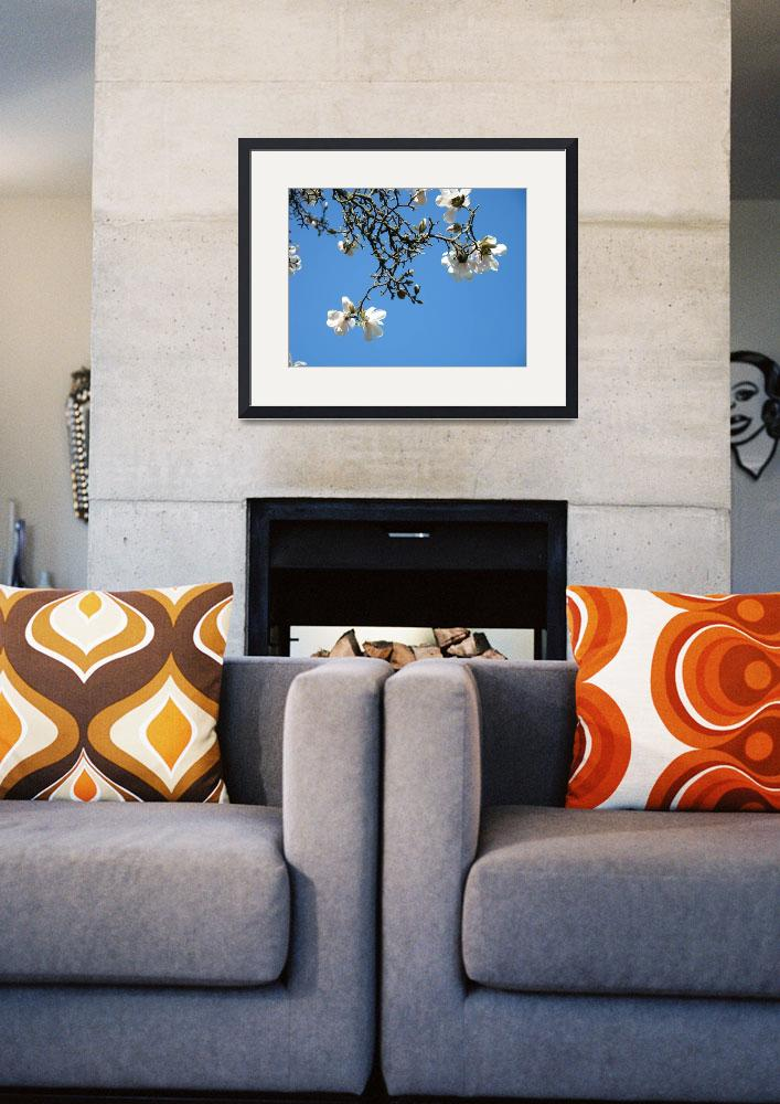 """Magnolia Tree Art Prints Blue Sky Landscape Trees&quot  (2010) by BasleeTroutman"