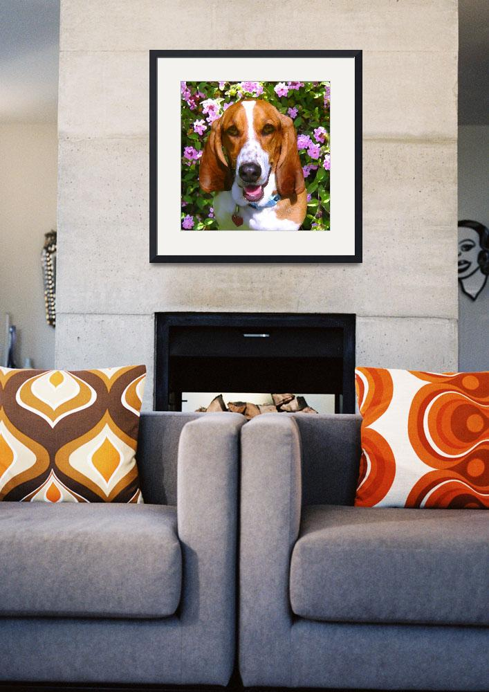 """Happy Basset Hound&quot  (2009) by AmyVangsgard"