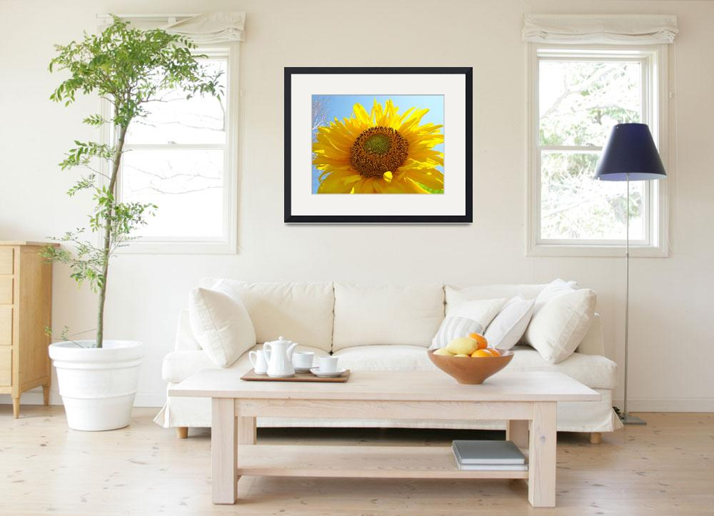 """SUNFLOWER Sunlit Blue Sky Baslee Troutman Art&quot  (2009) by BasleeTroutman"