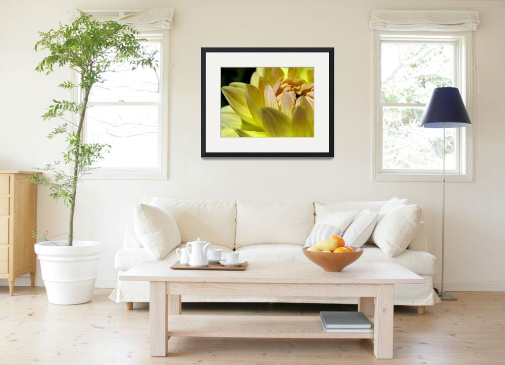 """Dahlia ""Intimate #1"" Art Print&quot  (2007) by SoulfulPhotos"