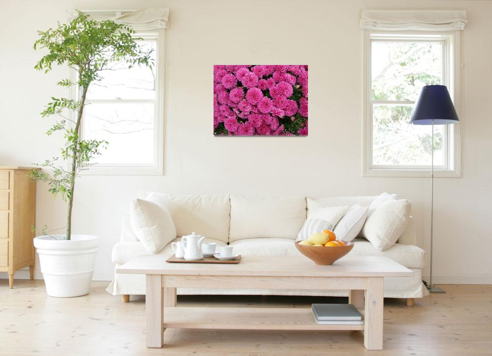 """Explosion of Pink&quot  (2009) by TheMears"
