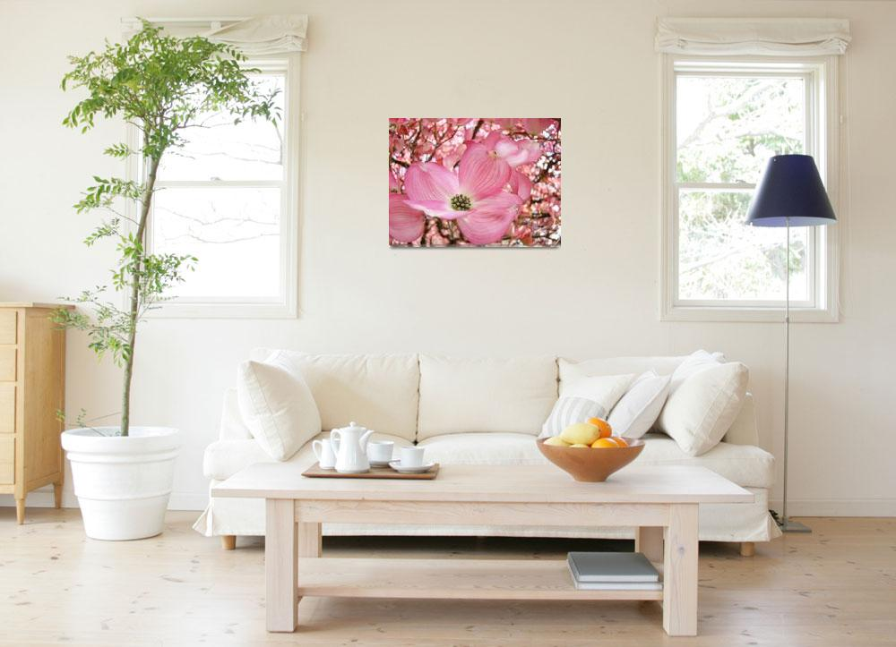 """DOGWOOD Flowers Pink Dogwood Tree 1 Giclee Art&quot  (2009) by BasleeTroutman"