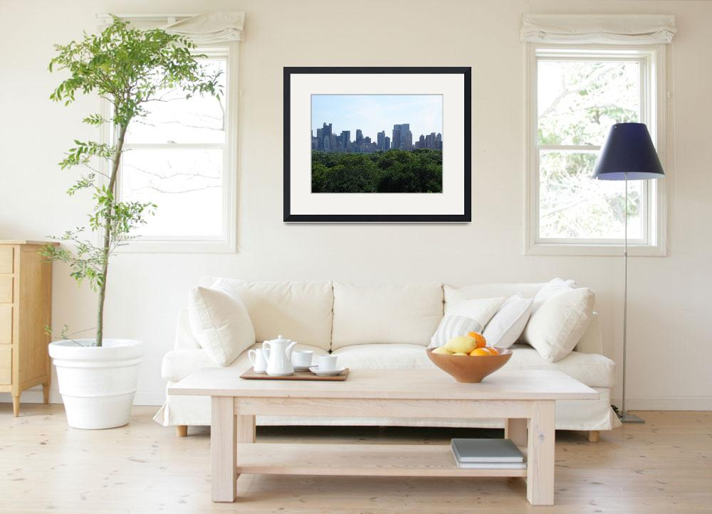 """Central Park & Manhattan from MET Museum&quot  (2008) by whateverdesign"