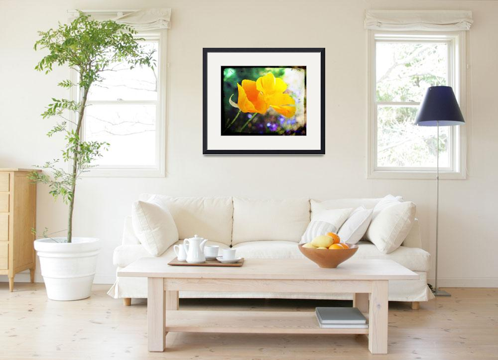 """Double the California Poppies&quot  (2010) by TheHiddenStudio"
