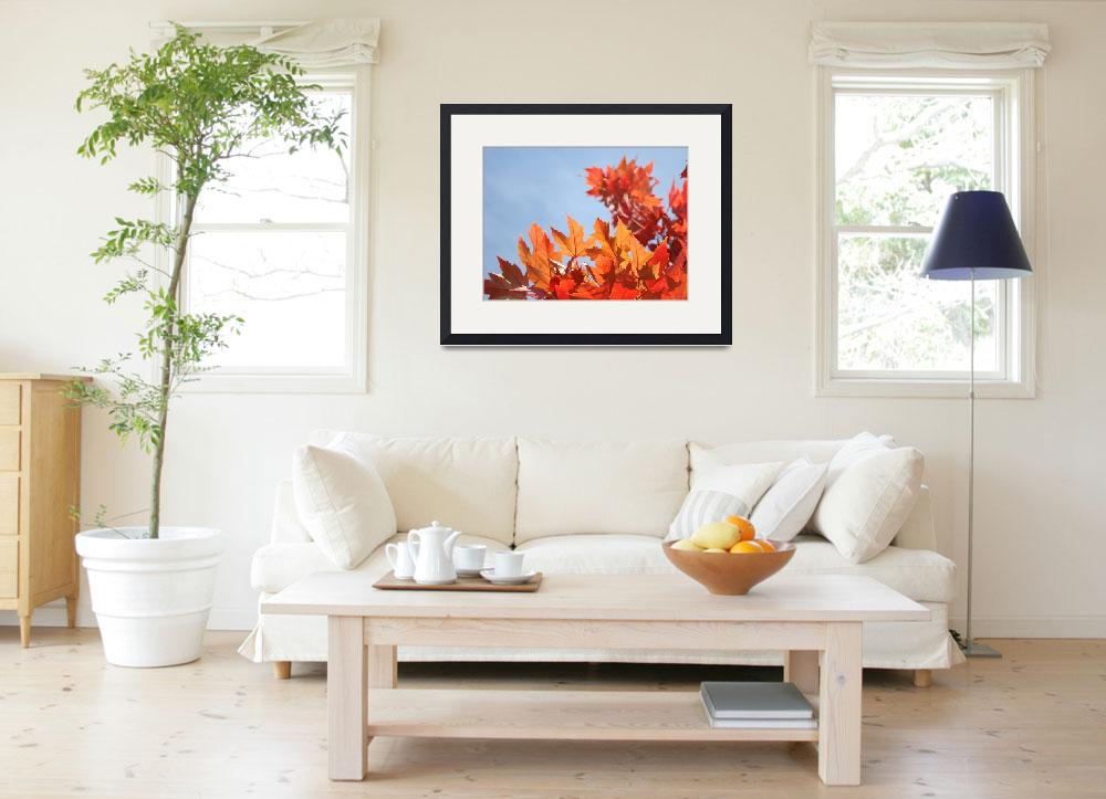 """FALL ART Blue Sky Orange Sunlit Autumn Leaves&quot  (2009) by BasleeTroutman"