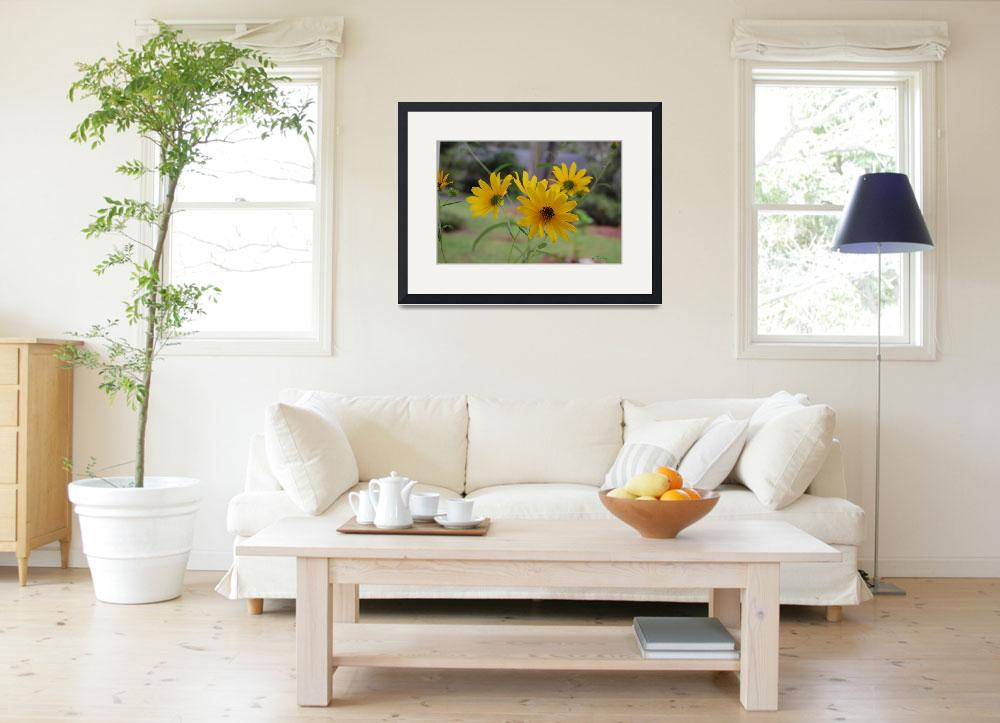 """Fall Daisies&quot  (2012) by rderder"