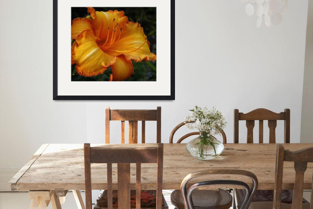 """Golden Daylily&quot  by mtspace"