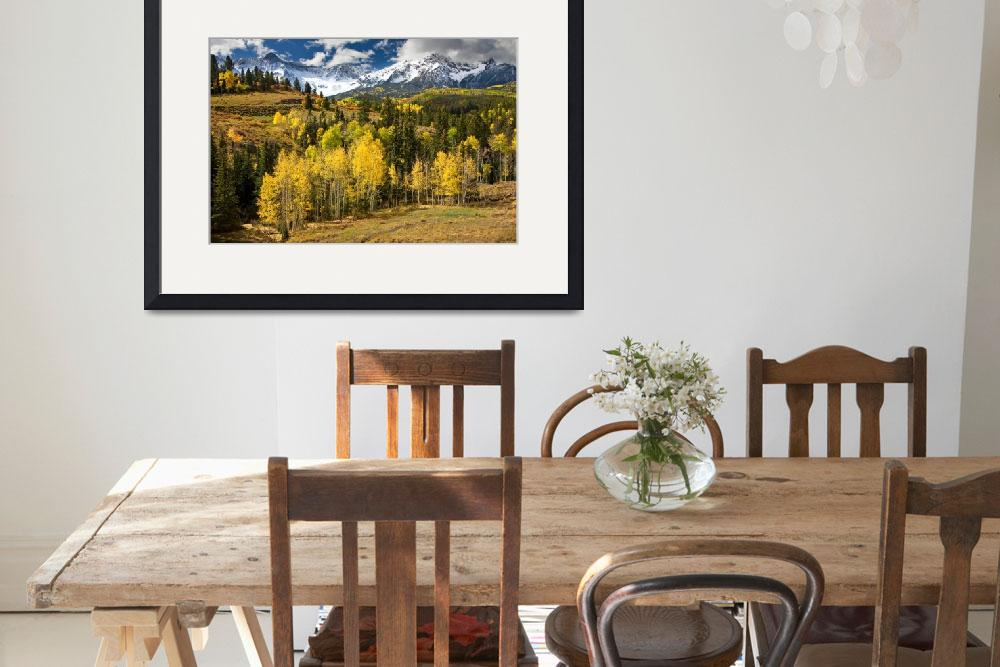 """Yellow Aspens in The Rockies&quot  by pbk"