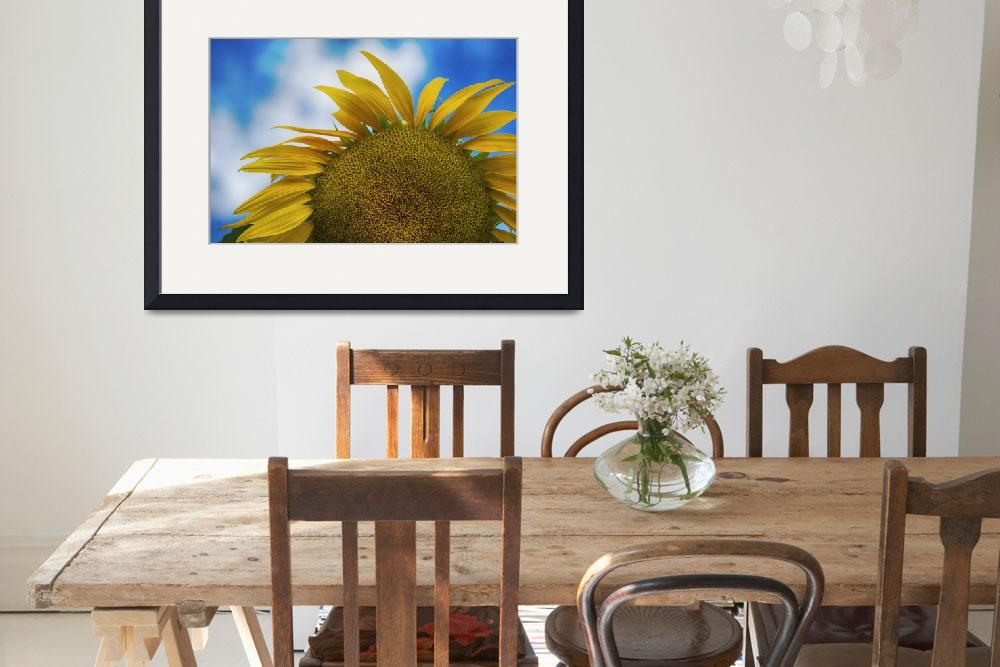 """Imperfect Sunflower&quot  (2016) by SoulfulPhotos"
