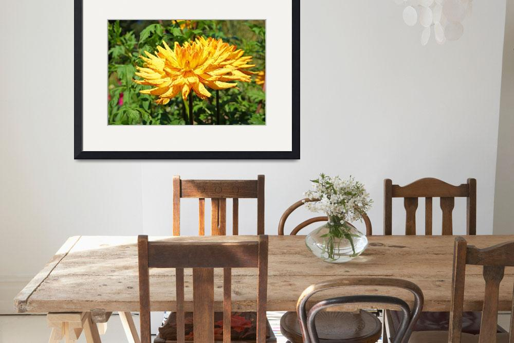 """Dahlia Flowers Art Prints Gifts Red Yellow Dahlias&quot  (2016) by BasleeTroutman"