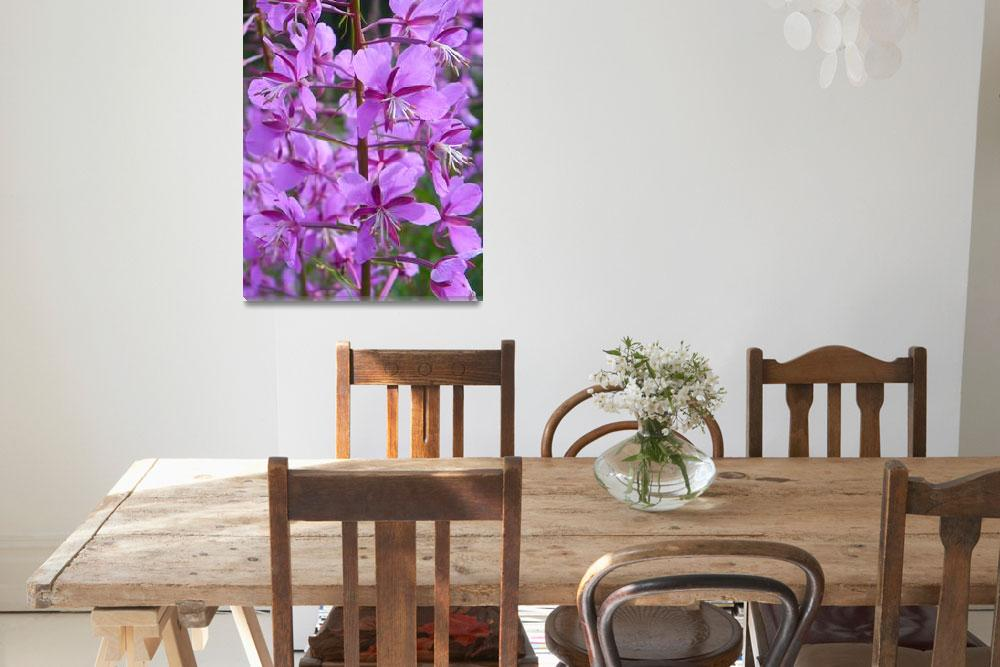 """Botanical - Alpine Fireweed - Outdoors Floral&quot  by artsandi"