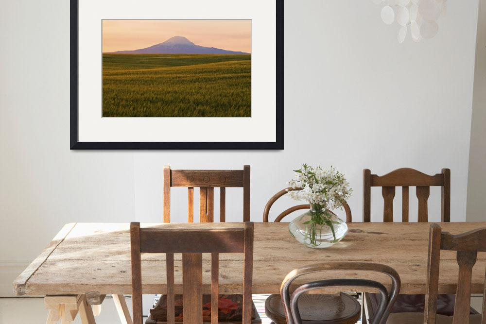 """Mt. Adams & wheat field #1&quot  (2007) by zensphoto"