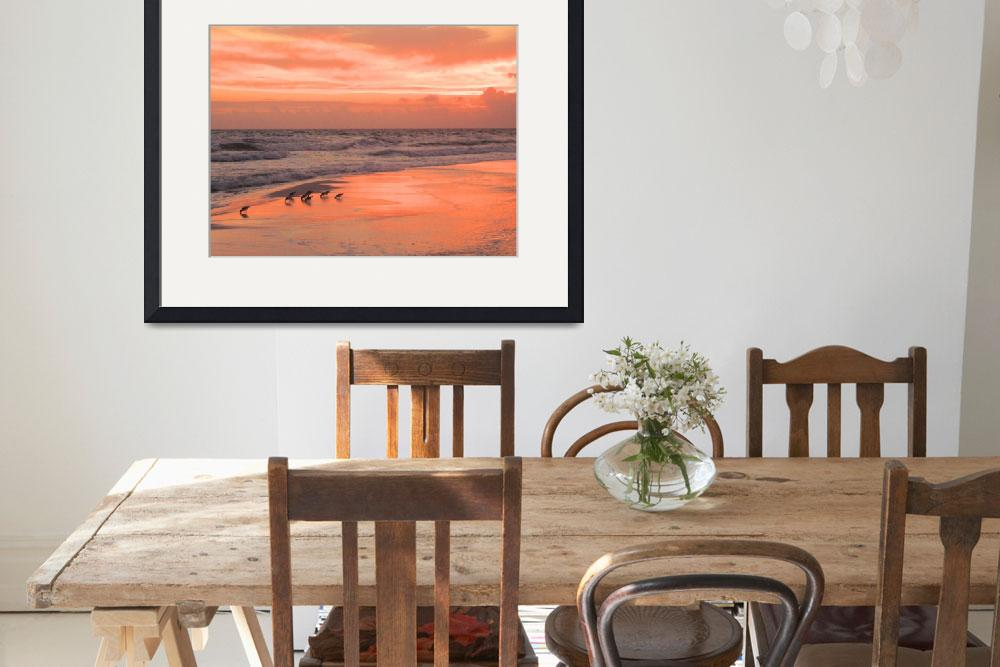 """Birds on beach at sunset&quot  (2012) by kenrainwaterphotography"