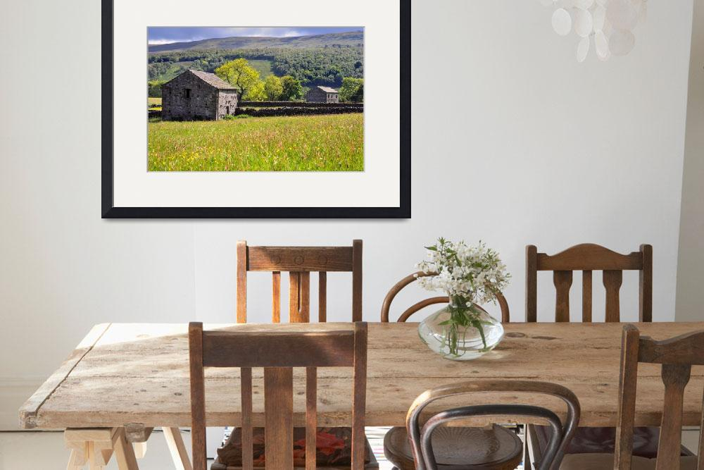"""Summer Meadow, Wharfedale - The Yorkshire Dales&quot  (2010) by Dave_Lawrance_Photography"