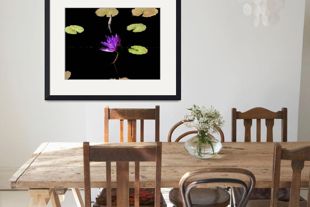 """Water lily&quot  by DickGoodman"