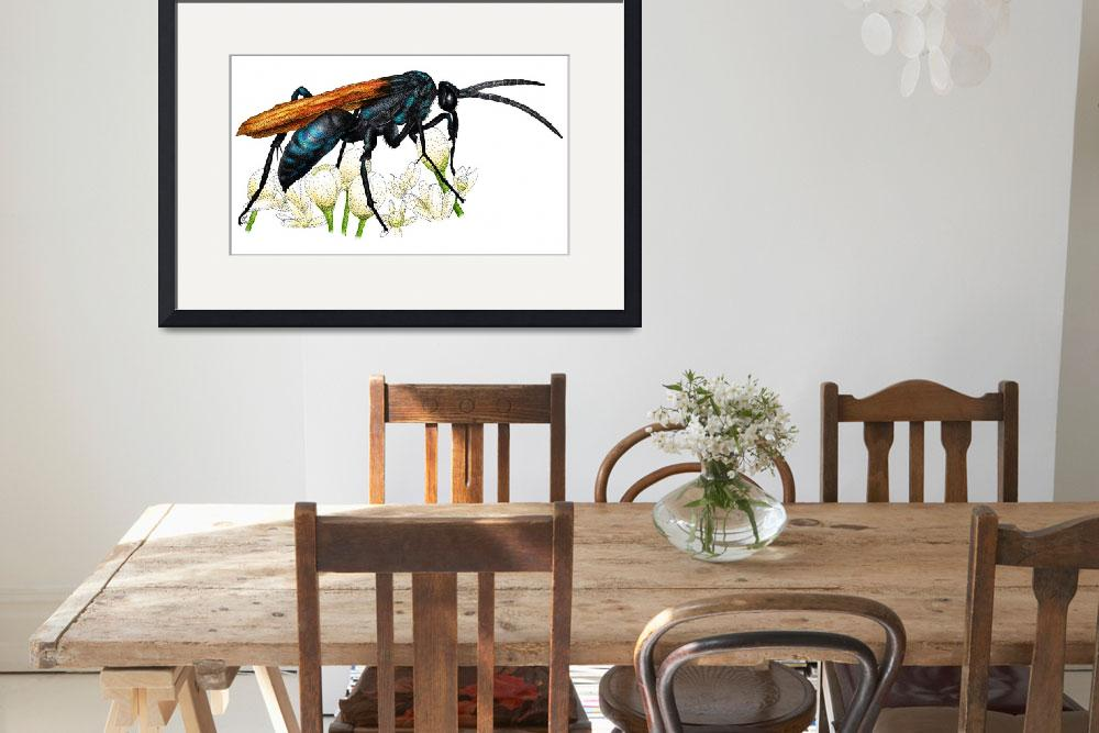 """Tarantula Hawk Wasp&quot  (2009) by inkart"