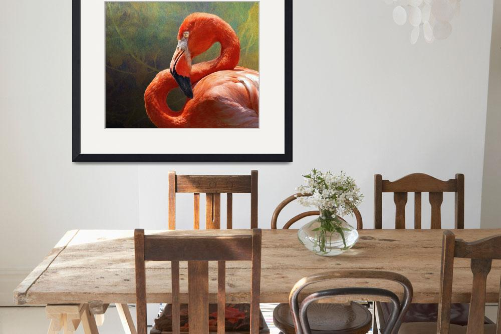 """blinding beauty - greater flamingo&quot  (2011) by rchristophervest"