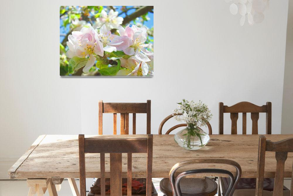 """Spring Apple Blossoms Flowers Art Prints Trees&quot  (2014) by BasleeTroutman"