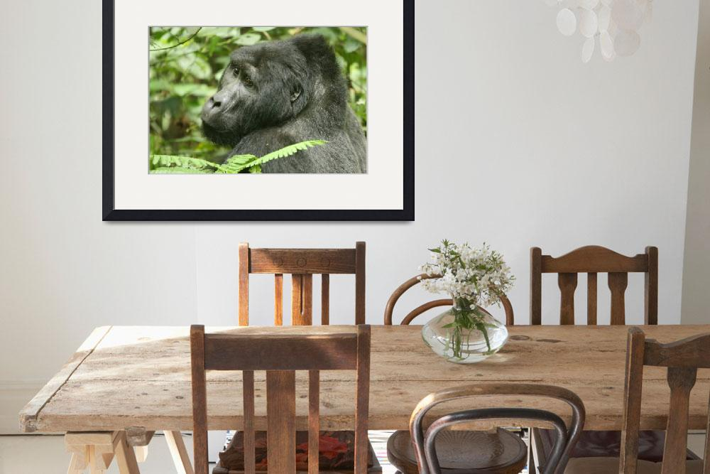 """Mountain Gorilla&quot  by Janetreynolds"