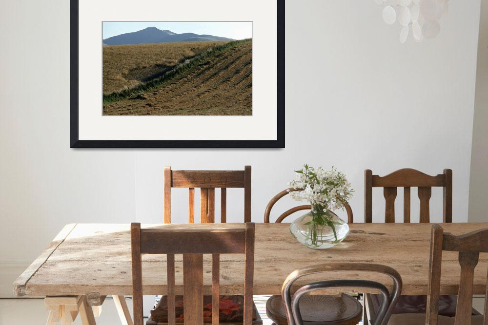 """After the Harvest Brecon Beacons Wales&quot  by DMHImages"