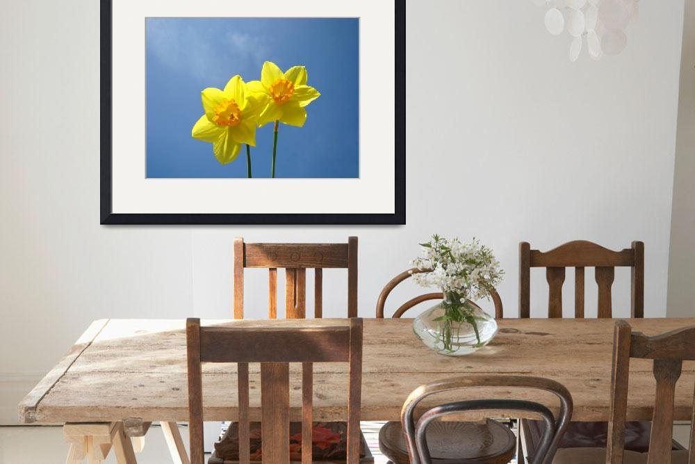 """Spring Blue Sky art prints Daffodil Flowers Decora&quot  (2014) by BasleeTroutman"