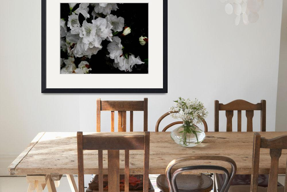"""whiteflowers-nouvelle1-1a-signed&quot  by patriciaschnepf"