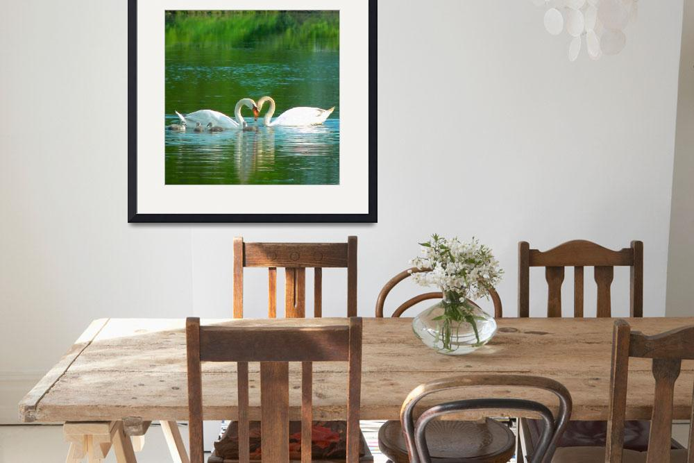 """Swans and Cygnets 2&quot  (2010) by bleij50"