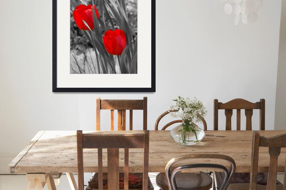 """Tulips duo painted&quot  (2008) by LHPhotography"